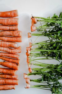 Carrots in a row with the their tops cut off.