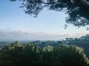 A view of Los Angeles from the hills above Brentwood.