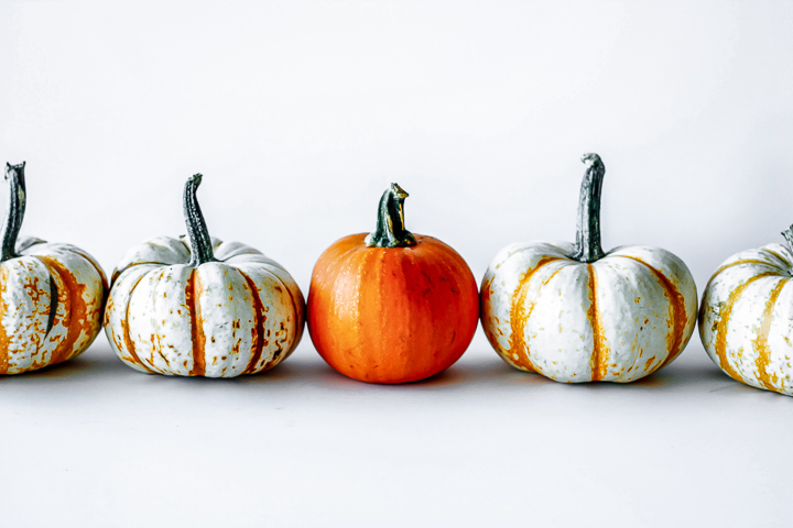 a row of orange of and white pumpkins on a white table