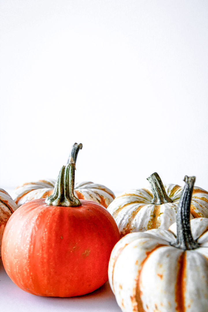 four orange and white pumpkins and their stems