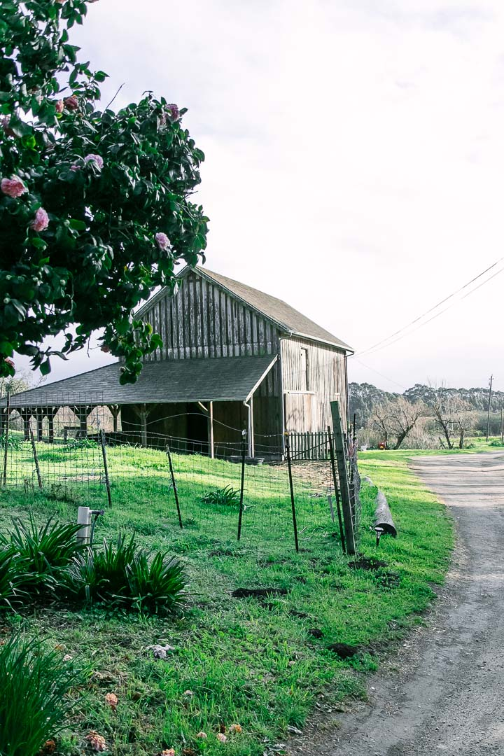 A barn beside a dirt road