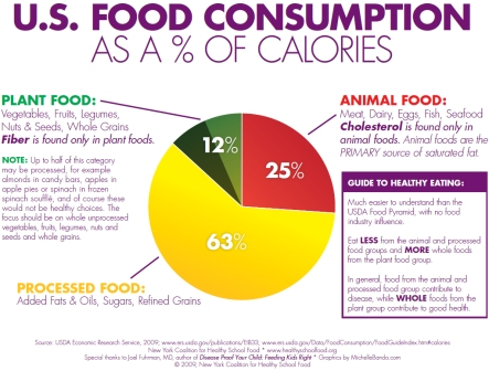 New York Coalition for Healthy School food chart of United States food consumption by calories