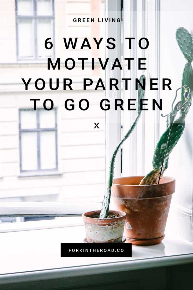 "two cacti in ceramic pots on a window sill with the words ""6 ways to motivate your partner to go green"" in black writing"