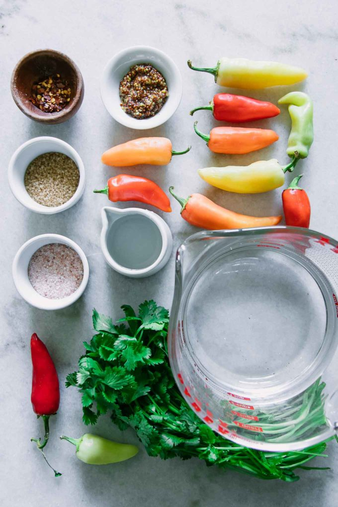fresh peppers, cilantro, and bowls of water, vinegar, salt, and sugar on a white marble table