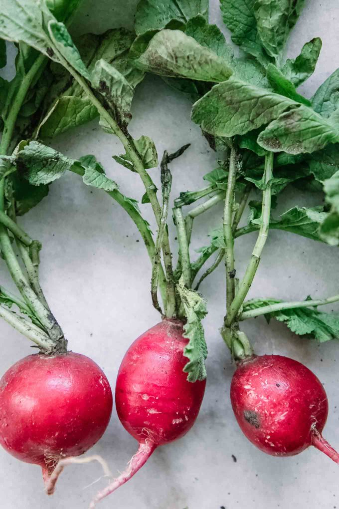 dirty radishes and radish leaves on a white table