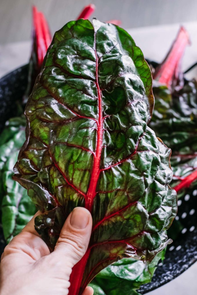a hand massaging olive oil onto chard leaves