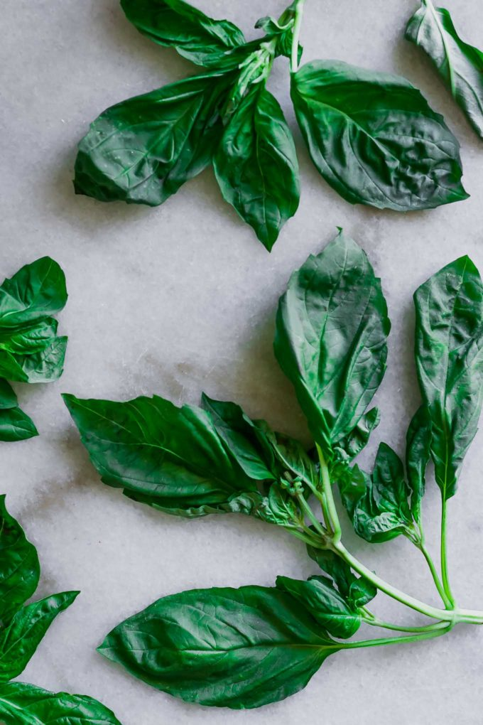 basil leaves on a white marble tabletop